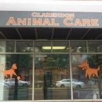 wpid-clarendon-animal-care.jpg